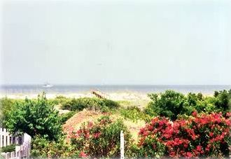Harbor Island villa rental - View from Living Room & Back Deck