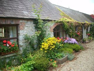 County Limerick cottage photo - Summer flowers