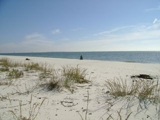 Dauphin Island condo photo - Fishing from beach.