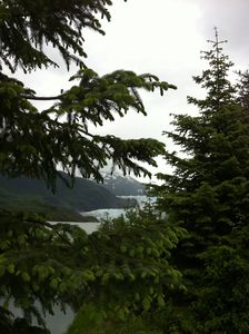 A gray peek at Mendenhall Glacier