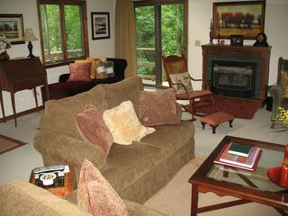 Burnsville cabin photo - Living Room with New Art!