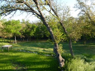 Lampasas house photo - Looking at the creek from the newly fenced in pool.