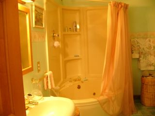 Saratoga Springs house photo - Master bathroom tub/shower/jacuzzi
