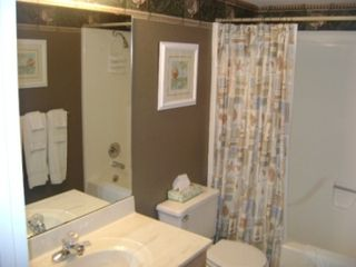 Osage Beach condo photo - Guest bathroom