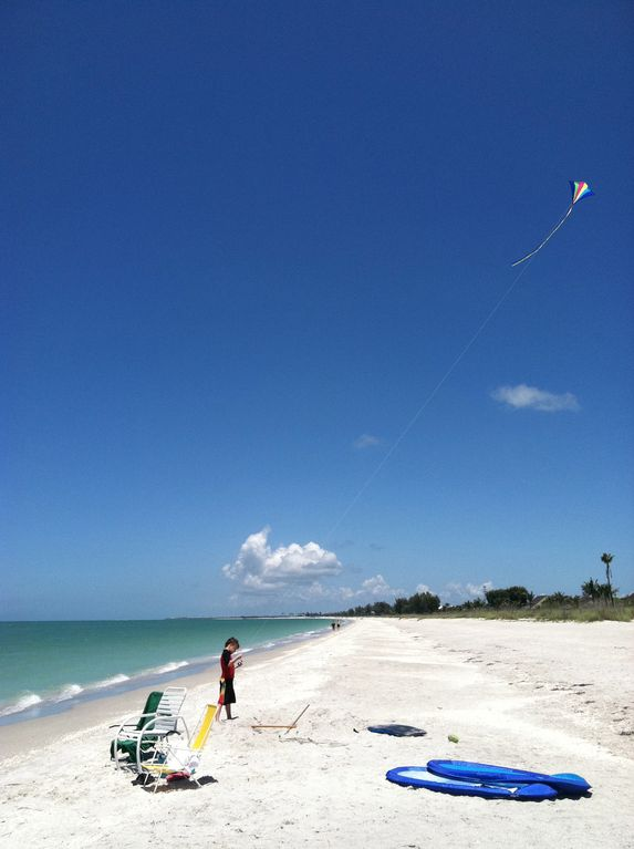 Go fly a kite!