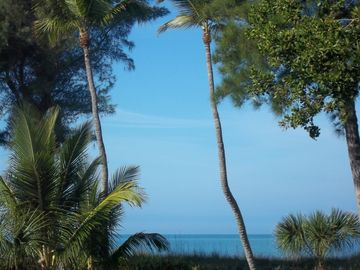 View of Gulf from Beach Cottage