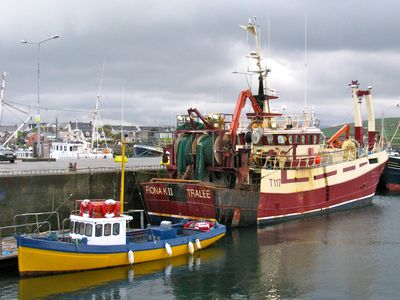 fishing boats at Dingle Harbour