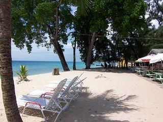 Paynes Bay apartment photo - Local beach & cafe