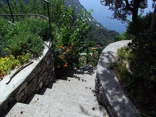 Positano house photo - Staircase to the house through terraced garden.
