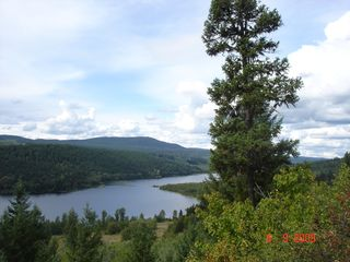 Cariboo cottage photo - The view of the property from the ridge top trail