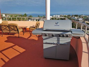 Social terrace is complete with a gas grill.