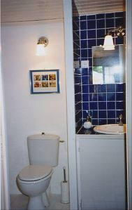 Upstairs bathroom with shower, sink, toilet, cosmetic stand, hairdryer.