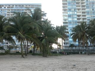 Isla Verde condo photo - Lovely location right on the beach