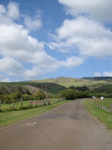 Take a drive to Waimea, or visit the Volcano. There is lots to do and see
