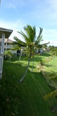 Waikoloa Beach Resort condo photo - A view from the Lanai to the left