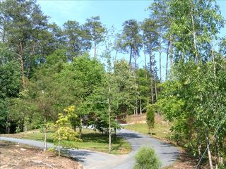 Part of the circular driveway - Pigeon Forge cabin vacation rental photo