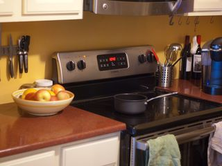 Austin apartment photo - Kitchen and pantry are fully stocked...new stainless steel appliances