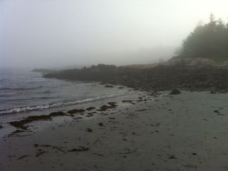 Prospect Harbor house photo - Nearby beach in the fog