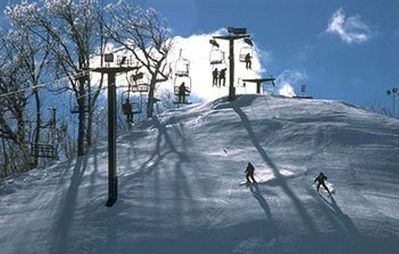 On resort grounds, spend the day skiing