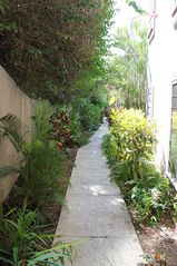 Cruz Bay condo photo - Beautiful landscaping adorns the short pathway to the shared pool.