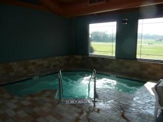 Wisconsin Dells cabin photo - Clubhouse indoor & outdoor hot tub