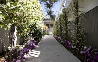 Fragrant Jasmine and Impatiens adorn walkways; Gardens thoughout the property