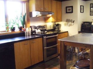 Ithaca lodge photo - Fully equipped kitchen with new double oven stove and stainless steel island