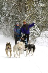 Canmore hotel photo - Dogsled