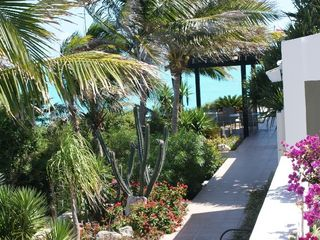 Providenciales - Provo villa photo - Lush tropical gardens surround the villa