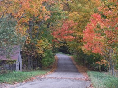 Fall Colors on Road by House