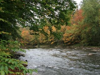 Clearfield cabin photo - West Branch of the Susquehanna River in autumn at cabin