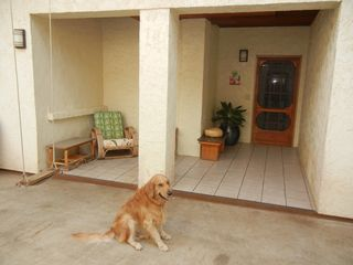 Makaha studio photo - My Goldie at entrance to Suite. Best location at Makaha Surfing Beach!