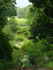 View from the deck - Mystic house vacation rental photo