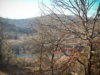 Branson condo photo - Looking out from your deck in late fall to Lake Taneycomo just below.