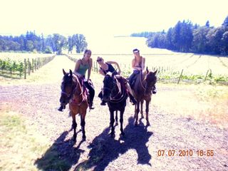 Portland apartment photo - Nearby Winery Tours by Horseback on Tennessee Walkers