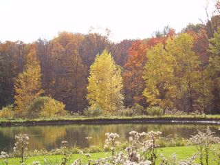New Lebanon house photo - Beautiful pond in fall