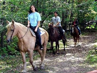 Bushkill chalet photo - FREE horseback riding in community year round