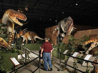 Branson cabin photo - Branson has lots of museums. The dinosaur museum is a favorite for all ages.