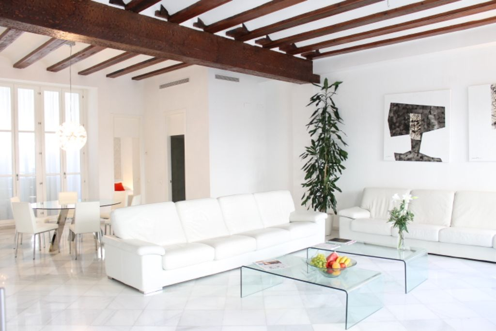 UNMATCHED LUXURY NEXT TO THE CATHEDRAL - VALENCIA