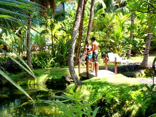 Pahoa cottage photo - Beautiful tropical scene at the Tiki Hut