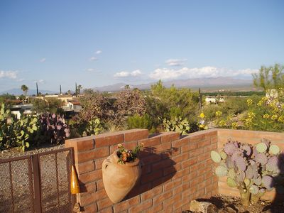 Green Valley townhome rental - side of brick patio overlooking all kinds of native trees, cactus, plants