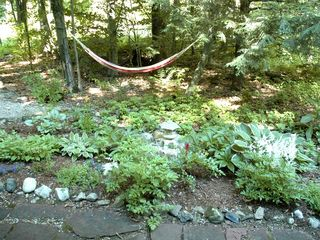 Lee cottage photo - Perennial garden and hammock