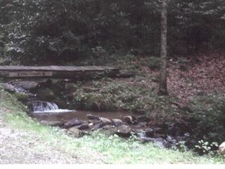 Maggie Valley cabin photo - Tiny portion of 350 foot creek with wading pools