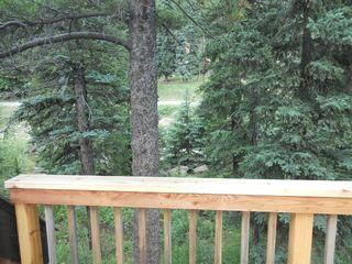Aspen, Blue Spruce, Pines, Cedar, Open Space - Nederland lodge vacation rental photo