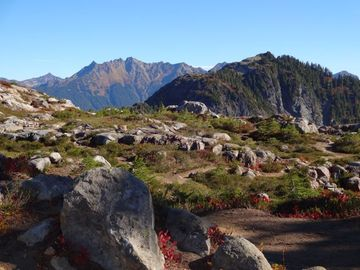 Artist Point opens in late July with trails and scenic vistas