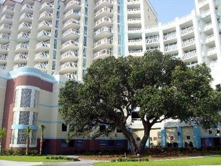 Horizon condo photo - The most expensive tree in Myrtle Beach...building was built around the live oak