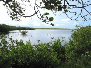 Marathon villa photo - State Park canoe trails