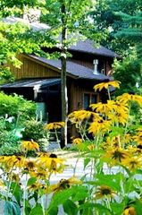 Interlochen studio photo - Hideaway II's House