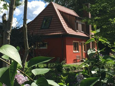 Small villa in the wild garden With osteopathy and aromatherapy massage