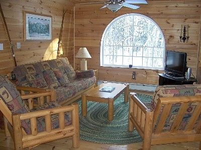 the cozy living room with views of deer crossing in the woods